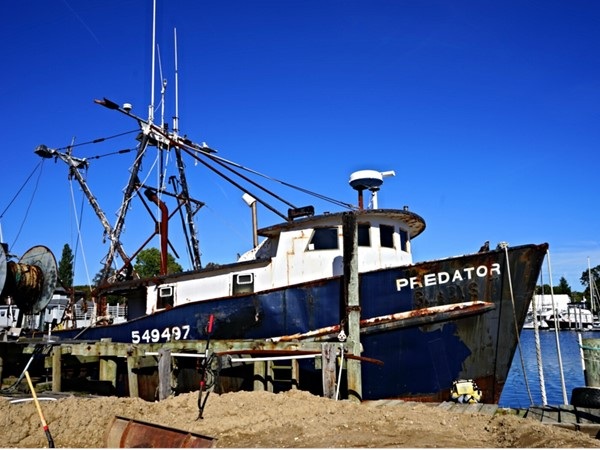 Fishing boat near the fish market. You get the freshest seafood in Greenport
