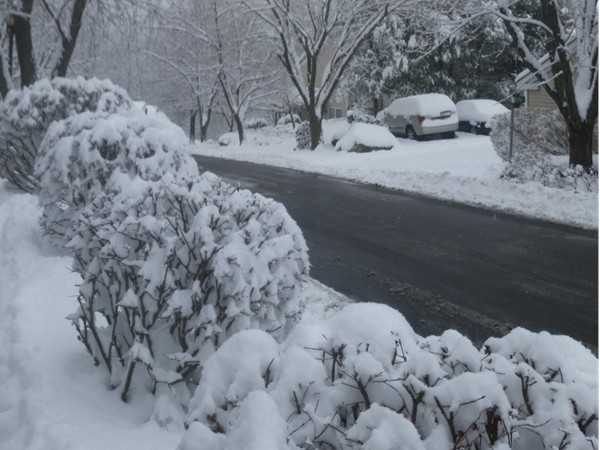 Winter wonderland in Woodbury Heights.