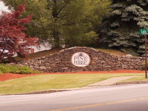 Welcome to Pine Ridge