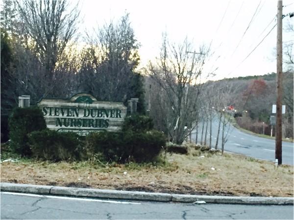 Steven Dubner Nurseries