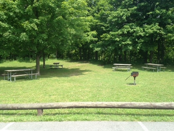 Picnic area at the Erie Canal Park at Cedar Bay