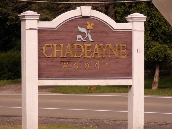 Welcome to Chadeayne Woods in Cornwall
