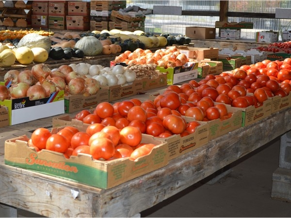 Family owned and operated, Prays Family Farms has a huge selection of fruits and vegetables.