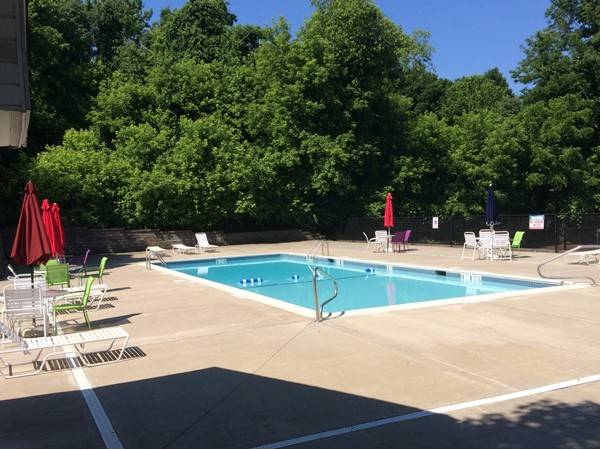 Enjoy the day in the pool at Lexington Hill