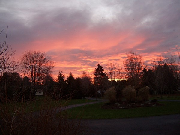 Glorious fall sunrise in Graham Creek Heights in Penfield