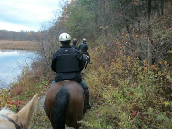 Horseback riding at Bashakill!