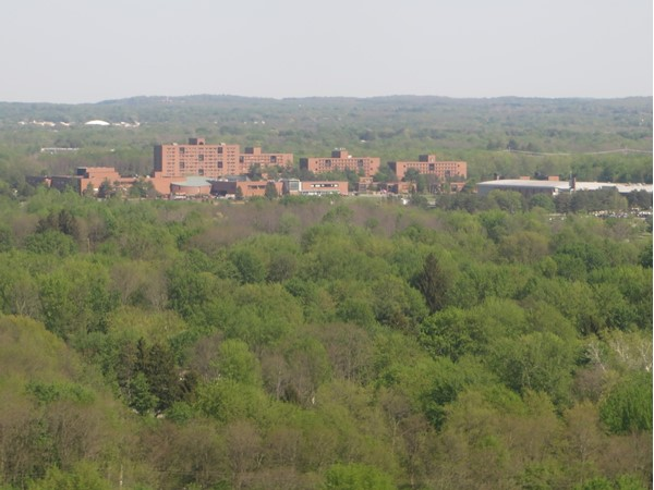 The brick buildings of the RIT campus from the air