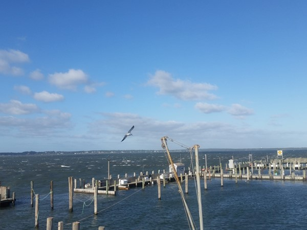 Empty boat slips right after the storm Joaquin. Shinnecock inlet, Hampton Bays