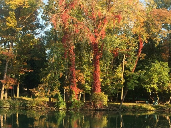 Beautiful fall day on the canal in Pittsford