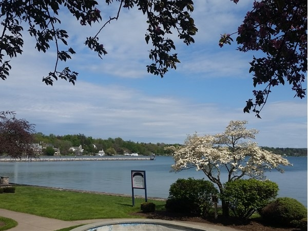 Skaneateles is in bloom