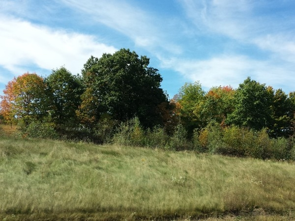 Drive along Route 219