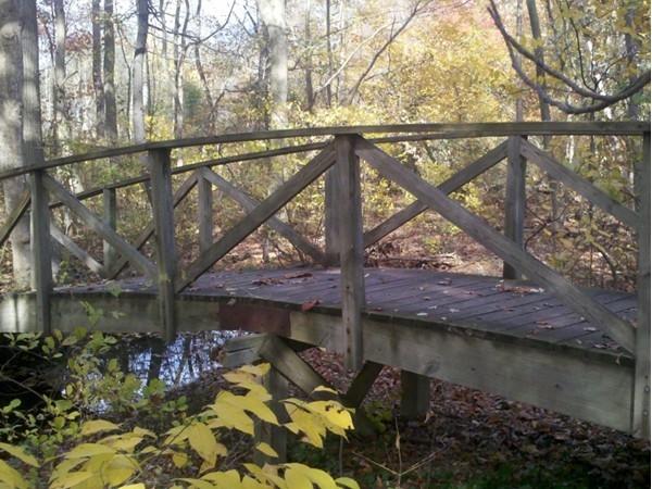 Inviting bridge into Nature Perserve