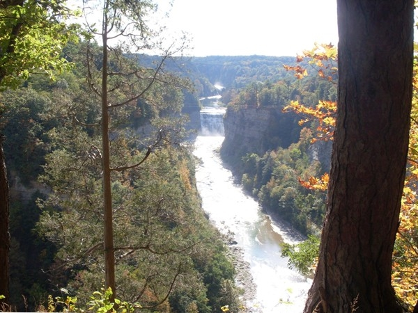 Enjoy the magnificence of Letchworth State Park. Three Waterfalls, Expansion Bridge, and more!