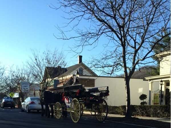 Cold Spring Harbor Village beautiful antique horse and buggy