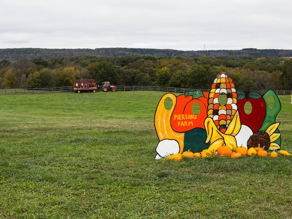Pierson's Family Farm - Halloween hay rides and Pumpkin picking