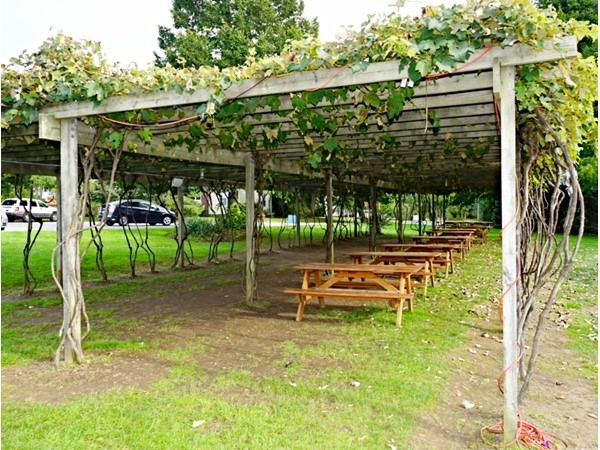 Bring your own food and taste a delicious variety of wines at Pugliese Vineyards