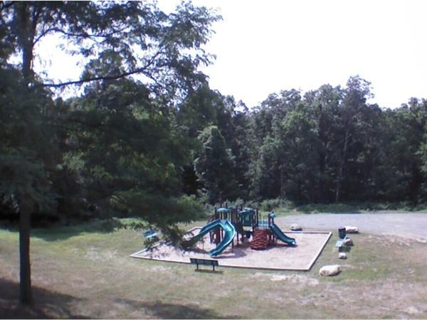 Park in Walton Lake Estates