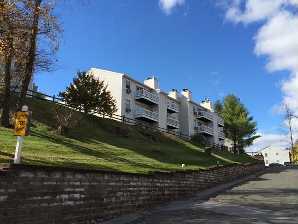Lexington Hills
