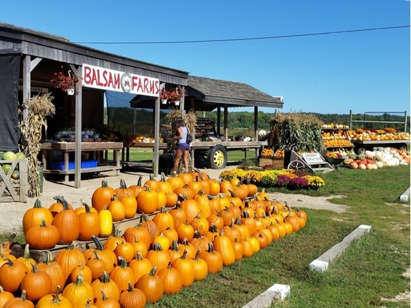 Always only fresh, locally grown produce at the Balsam Farm stand