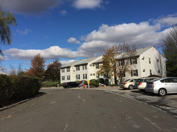 Plenty of parking in Lexington Hills