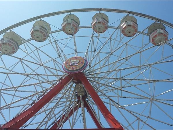 Great place for kids - Mattituck Strawberry Festival