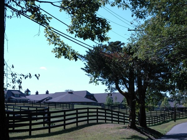Silver Oak Stable - taken from Moriches Road