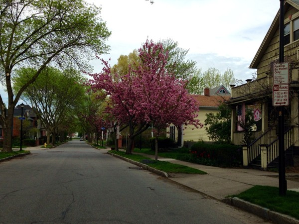 Atkinson Street in Corn Hill. A tree lined street with beautiful homes.