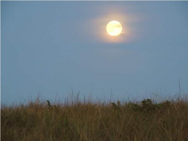 Beautiful view of the moon at Atlantic Beach