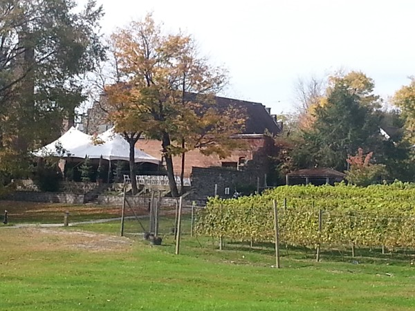 Enjoying the day at the oldest winery in the country, Brotherhood Winery