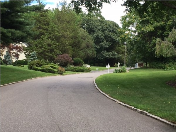 Typical tree-lined street in Poquott, featuring a lush landscape