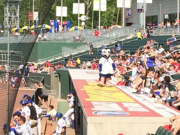 Enjoying the day watching our Rockland Boulders at Provident Bank Park in Pomona