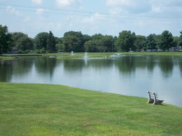 Quiet time at Thomas Bull Park