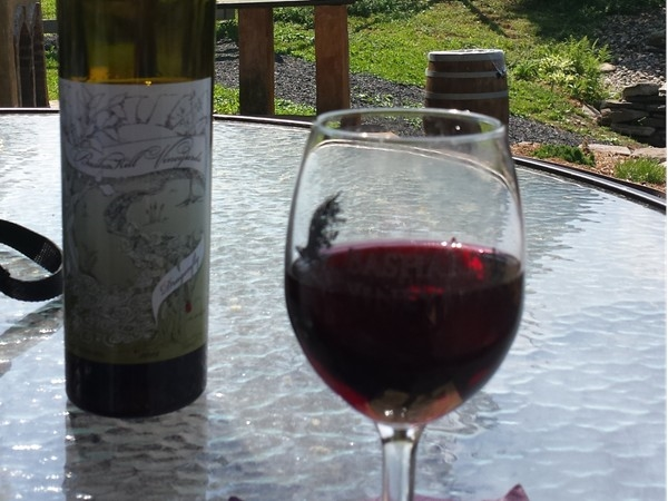 Enjoy the Bashakill Winery on weekends from Memorial Day weekend through the fall