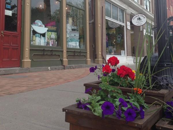 Quaint Main Street shops in the village of Trumansburg