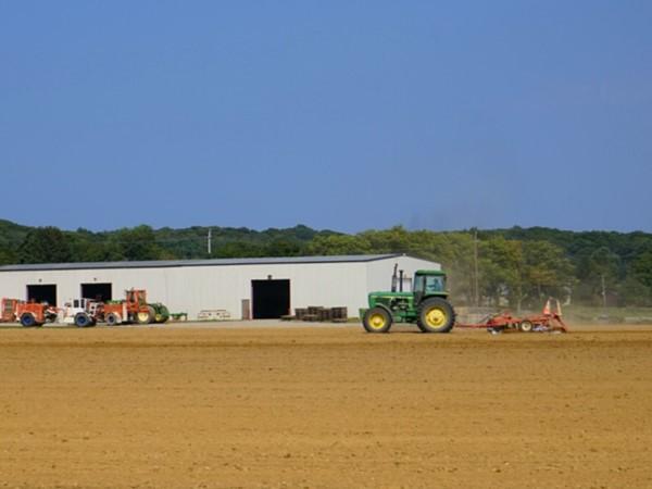 The local farms in Riverhead