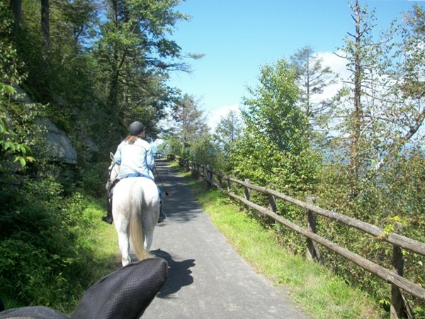 Riding horses at Mohonk Preserve! Hike and bike too!