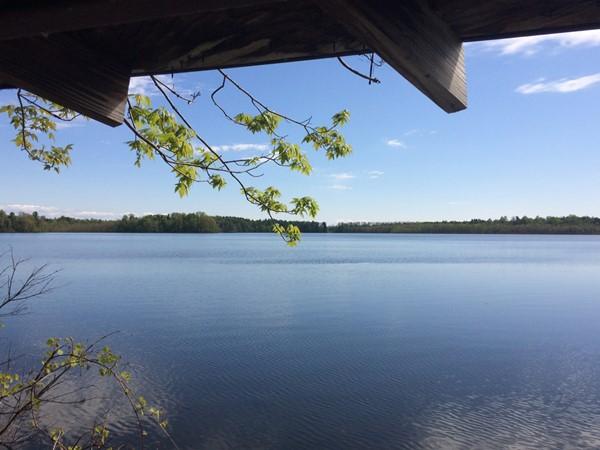 Beaver Lake in Baldwinsville! It's a nice three mile walk around the lake