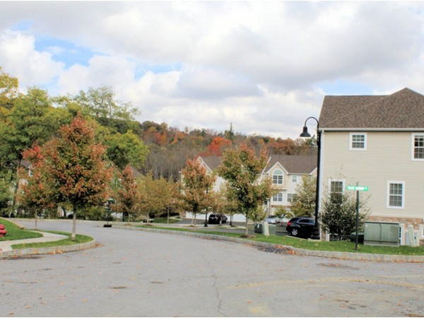New Townhouses at Hidden Creek at Monroe