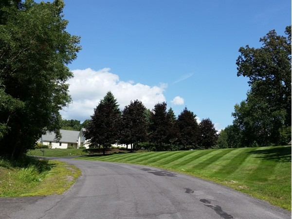 Beautiful Budd Lane in East Greenbush is known for large private lots and contemporary homes