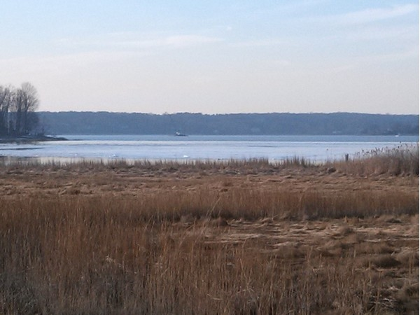 A peaceful view of Cold Spring Harbor