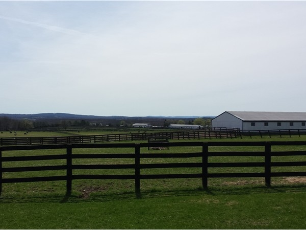 Blue Chip Farm is just picture perfect to see!  What a wonderful view