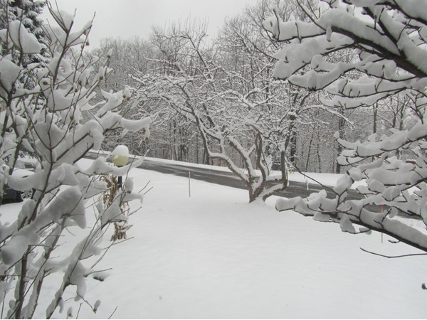 I'm dreaming of a white Thanksgiving - November 2014