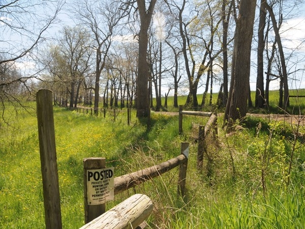Nations Road in Geneseo is a favorite spot for bird watchers