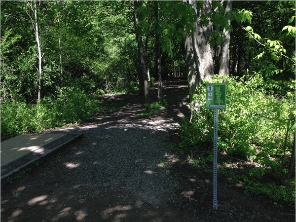 A little disc golf anyone? Super fun course right in the Town of Clay! Clay Park Central