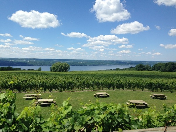 View of Seneca Lake and Wagner Vineyards from the deck of Wagner's Winery