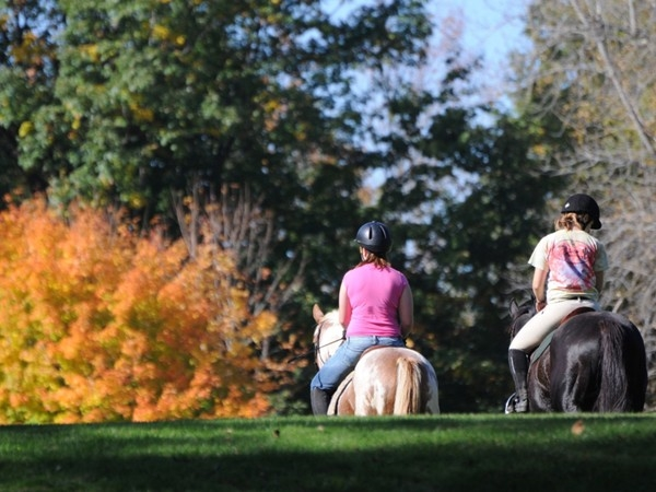Surrounded by horse farms, Mendon Ponds Park is popular for horse back riding