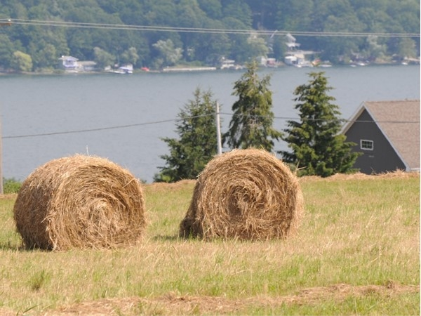 Just a few more bales waiting to go to the barn