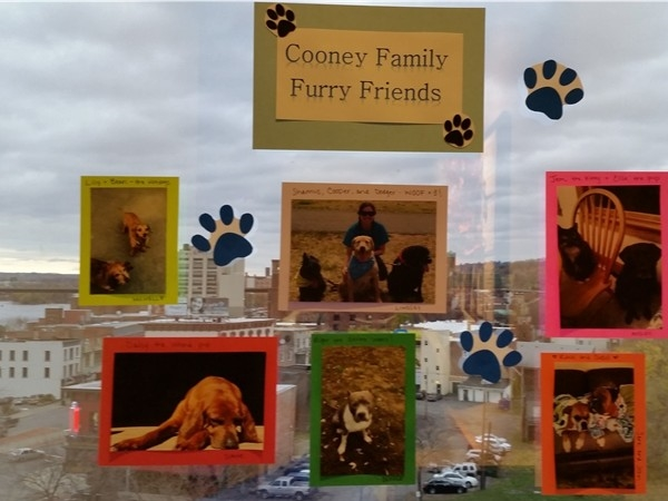 Dr. Cooney's office supports Mohawk Humane Society