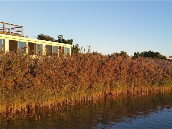 Have a romantic dinner with a Fort Pond view. Harvest on Fort Pond Restaurant. Montauk
