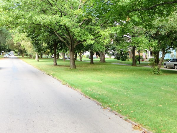 Beautiful tree-lined boulevard of Seneca Parkway off Lake Avenue in Rochester